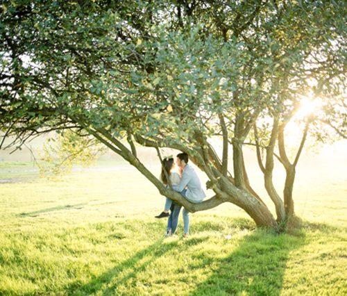 Review - SleekLens Wedding Presets